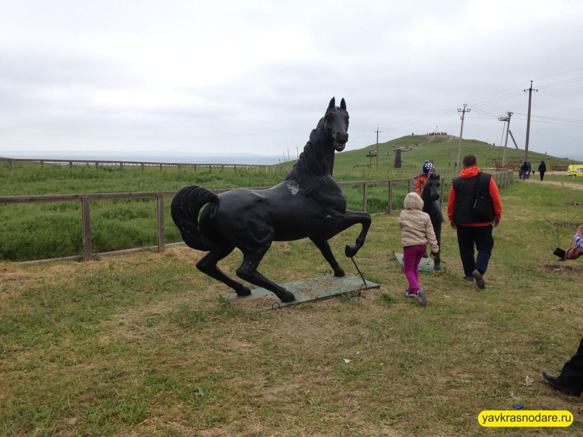 Конь в Атамани
